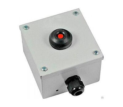Пост кнопочный ПКУ-15-21.111-54У2 КЕ081/2 (1з+1р) красная + PG-13.5